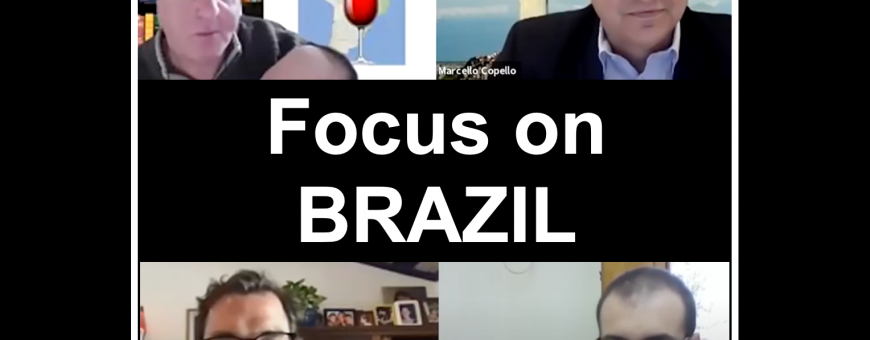 BRAZIL BRAVE NEW WORLD: and introduction to a growing market