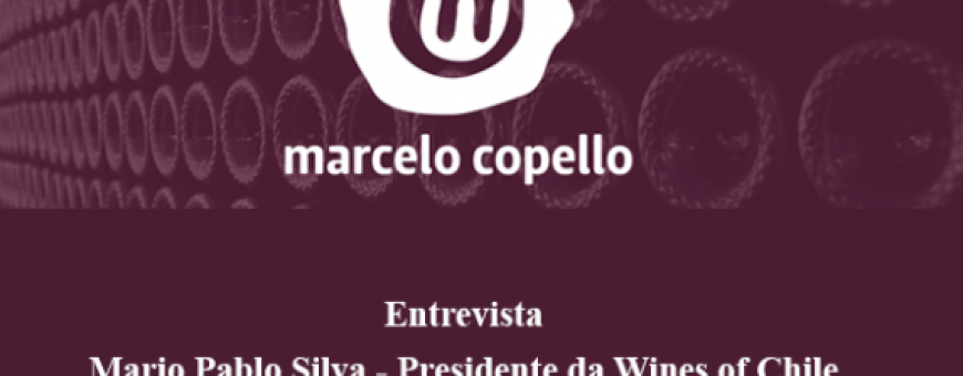 Marcelo Copello entrevista o presidente da Wines of Chile com exclusividade